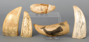Five scrimshaw decorated whale teeth