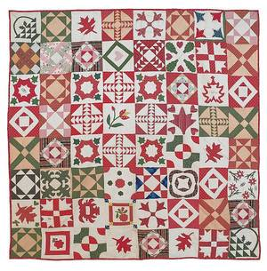 Pennsylvania pieced and appliqu friendship quilt dated