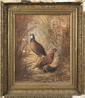 Oil on canvas of two quail