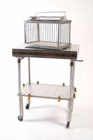 9 Cage Production Table Merv Taylor Custom Made