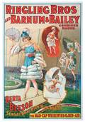 Ringling Bros and Barnum  Bailey Berta Beeson