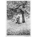 Edouard boubat french 19231999 cerisiers japonais japanese cherry 1983 gelatin silver print framed signed dated and titled 14 x 9 12 image 15 78 x 12 sheet provenance p