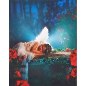Susan scalora american 20th c cibachrome print sleeping angel 2005 framed signed and dated on verso 20 x 16 sheet