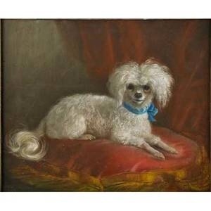 English school portrait of dog pastel on paper of seated poodle 1862 framed illegibly signed and dated 17 14 x 21 sight provenance estate of a private collector new york