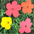 Andy warhol american 19281987 flowers 1964 offset lithograph in colors mailer 21 34 x 21 78 sheet publisher leo castelli new york provenance private collection