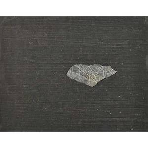 Emil lukas american b 1964 from roses to slate 1998 28 sheets of mixed media on paper in glass and wood box 11 x 8 12 each provenance haimes gallery san francisco private collection