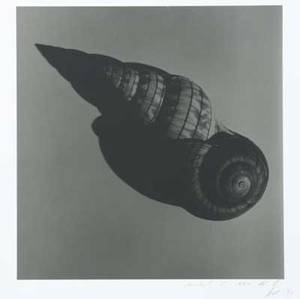 Michel comte swiss b 1954 two untitled gelatin silver prints 1991 signed and dated 12 x 11 12 image 20 x 16 sheet 16 x 12 12 image 20 x 16 sheet provenance private collec