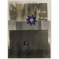Walter dahn german b 1954 untitled 198889 ink on photograph framed stamped signature 9 38 x 7 sheet provenance private collection new york