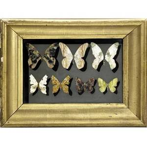 Richard blow  montici pietra dura plaque with butterflies in mixed hardstone and mounted in gilded frame inlaid m lower right plaque 6 14 x 9 14 framed 9 34 x 12 34