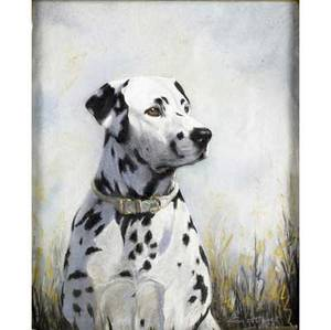 Constance haile british 20th c dalmatian pastel on paper framed 1955 signed 21 x 17 12 sight