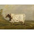James scraggs british 19th c durham ox oil on canvas framed 1837 signed and dated 25 x 33