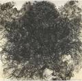 Kiki smith american b 1954 untitled hair 1990 lithograph signed dated and numbered 1924 36 x 36 publisher ulae west islip new york provenance private collection san francisco
