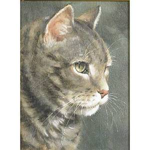 Cat portrait oil on panel of a tabby framed 20th c signed carolyn droge 12 x 9