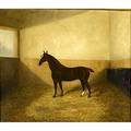 19th c horse portrait oil on canvas framed 24 x 20