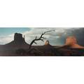 Jack l acrey american b 1941 color photographic print the storm 1988 framed signed and numbered 17 x 48