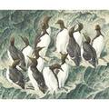 Charles frederick tunnicliffe british 19011979 watercolor on paper of penguin group framed signed 19 x 23