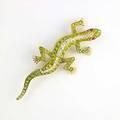 Demantoid garnet and diamond salamander brooch 14k oec diamonds ruby eyes ca 1900 unmarked 86 gs 2 12