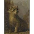 20th c european dog portrait oil on canvas lilly framed titled and initialed am 16 x 12