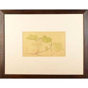 Edna walker american b 1880 botanical study tulip poplar graphite and watercolor on tracing paper byrdcliffe colony ca 1904 matted and mounted in byrdcliffe frame provenance estate of pe
