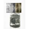 Robert rauschenberg american 19252008 razorback bunch etching iii 1981 photoetching in colors signed dated and numbered 2426 43 34 x 30 34 sheet publisher ulae new york provenan