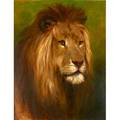 Harry dixon british 18611942 oil on canvas lion majesty framed signed and titled 35 x 28