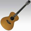 Taylor limited edition thirtieth anniversary xxxmc acoustic guitar 2004 serial no 20040524122 66250 40 12 x 15 18 x 3 34