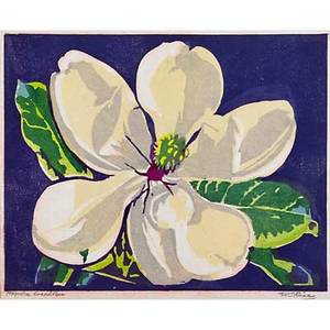 William rice american 1873  1963 color woodblock print on handmade paper magnolia grandiflora california pencil signed and titled image 7 x 8 12
