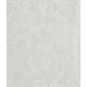 Jasper johns american b 1930 two offset lithographs silver cicada 1981 exhibition poster prints 19601970 philadelphia museum of art poster both framed larger 32 34 x 23 sight