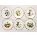 Boehm lennox complete set of eight boehm water bird collectors plates and one lenox limited edition commemorative plate 1977 trenton nj and kinston nc late20th c  bone porcelain original