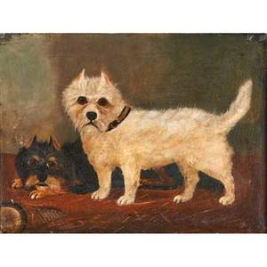 British school portrait of terriers oil on canvas of a black and white terrier 1893 framed signed illegibly and dated 14 x 18
