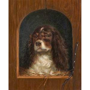 20th c british school portrait of dog oil on canvas of spaniel framed 15 12 x 12 12