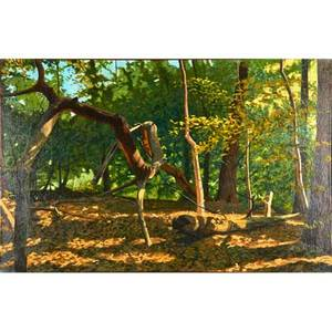 Joseph kabriel american 20th c oil on canvas of forest scene fallen limb framed signed 30 x 46