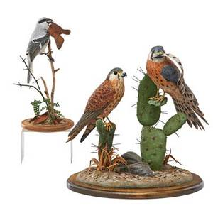 Contemporary folk art carved bird sculptures two by al riehl loggerhead shrike and pair of kestrels 2004 and 2006 both signed and dated larger 15 x 12 x 10