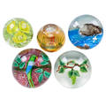 Studio art glass paperweights five one randall grubb studios vine dome one caithness scotland faceted swan two bird domes and one floral dome 20th c grubb and caithness signed largest 3 12