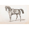 19th c equestrian studies book