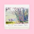 June Carey   Basking Eucalyptus Study