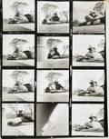 THE MISFITS STILL PHOTOGRAPHY CONTACT SHEET
