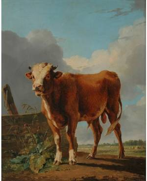 EUGENE JOSEPH VERBOECKHOVEN BELGIAN 17991881 The Bull