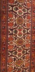 A Bidjar Runner North Persia