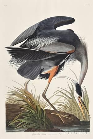 Audubon John James 17851851 The Birds of America Abbeville Press Facsimile