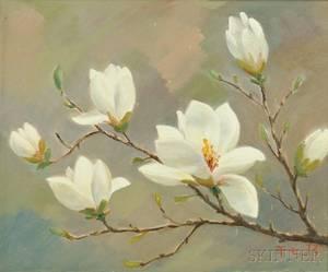 Oil Painting White Magnolia