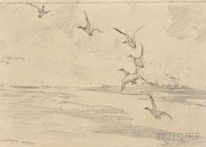 Frank Weston Benson American 18621951 Seven Pencil Studies of Ducks and Birds Widgeons Alighting Thrush and Yellow Legs