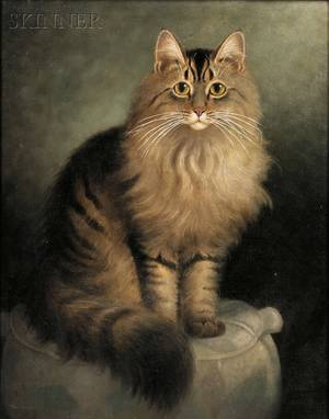 Percy A Sanborn American 18491929 Portrait of a Maine Coon Cat