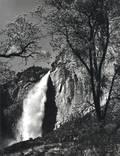 Ansel Adams American 19021984 Yosemite Falls Spring Yosemite National Park California