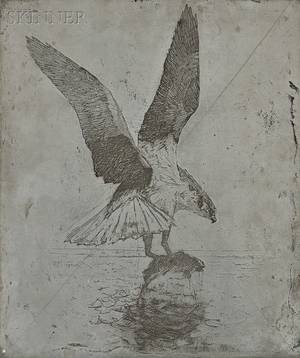 Frank Weston Benson American 18621951 The Canceled Zinc Plate for the Etching Fish Hawk