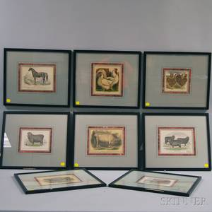 AngloAmerican School 19th Century Eight Framed Prints of Domestic Animals