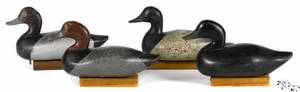 Four Chesapeake Bay carved and painted duck decoys mid 20th c