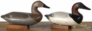 Attributed to Charles Barnard pair of carved and painted canvasback duck decoys mid 20th c