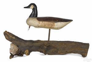 Carved and painted Canada goose decoy late 19th c