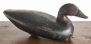 Carved and painted canvasback duck decoy